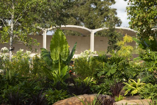 Looking through the Global Collection Garden to The Alcoves beyond. Photo by Michael Tims courtesy Houston Botanic Garden.