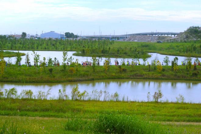 Willow Waterhole.