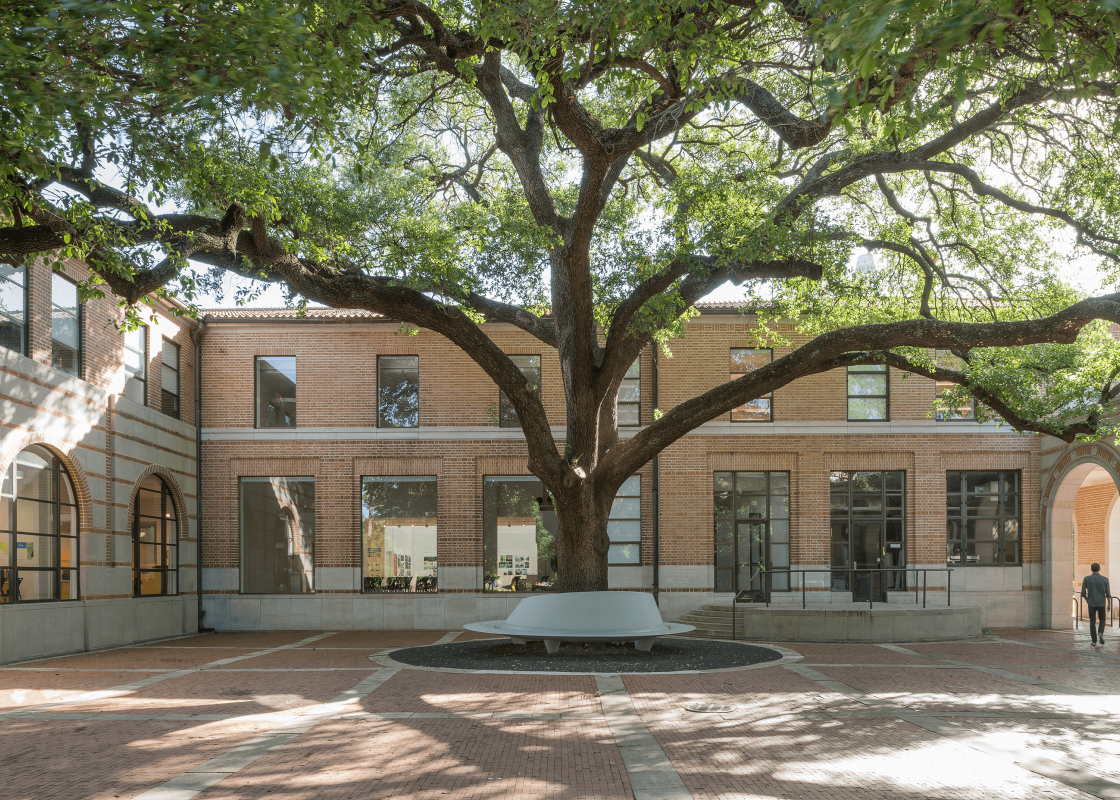 campus courtyard with a tree and a bench