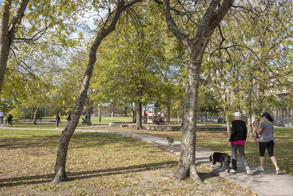Spotts Park. Photo by Paul Hester on December 15, 2019.