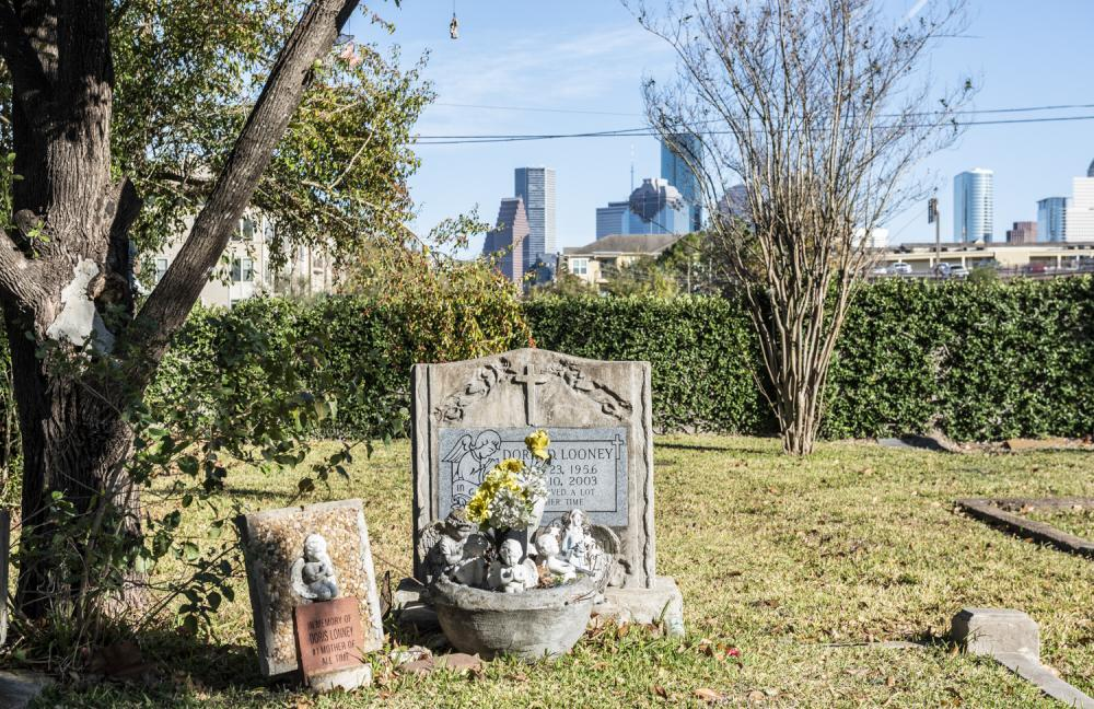 Magnolia Cemetery. Photo by Paul Hester on December 17, 2019.