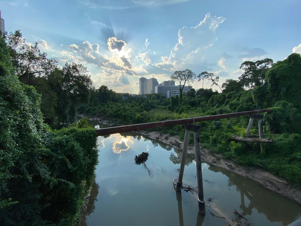 View of Buffalo Bayou from METRORapid Silver Line. Photo by Christof Spieler.