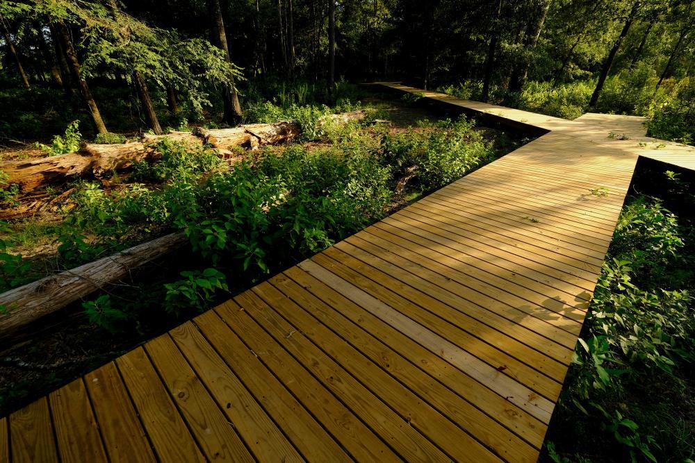 Memorial Faultline Wetlands boardwalk. Courtesy Memorial Park Conservancy.