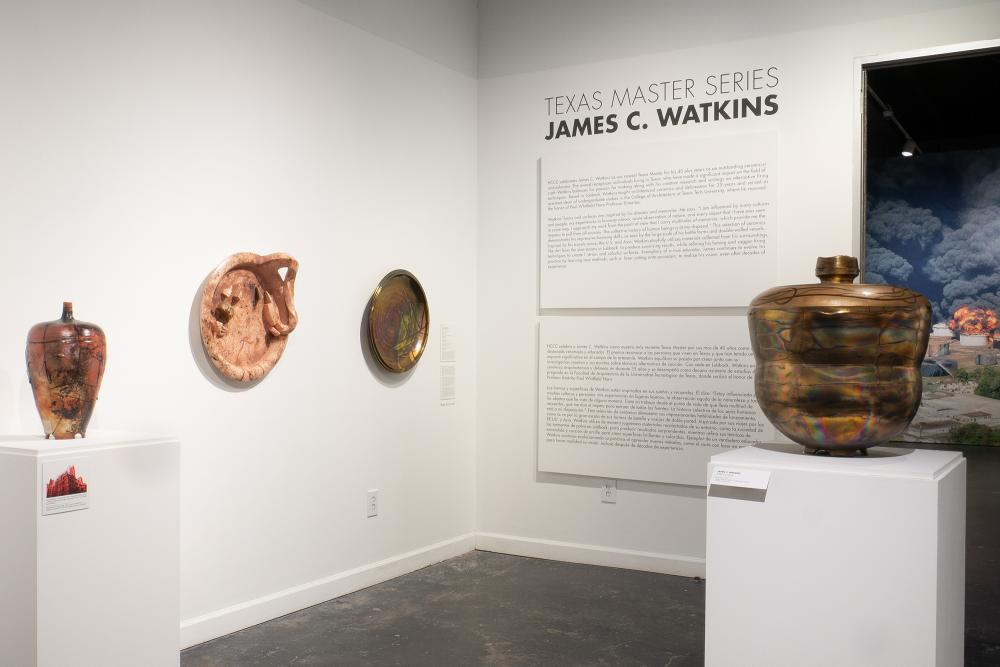 James C. Watkins at Houston Center for Contemporary Craft. Courtesy Houston Center for Contemporary Craft.